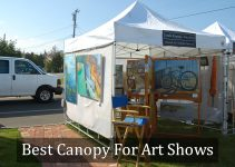 Best Canopy For Art Shows