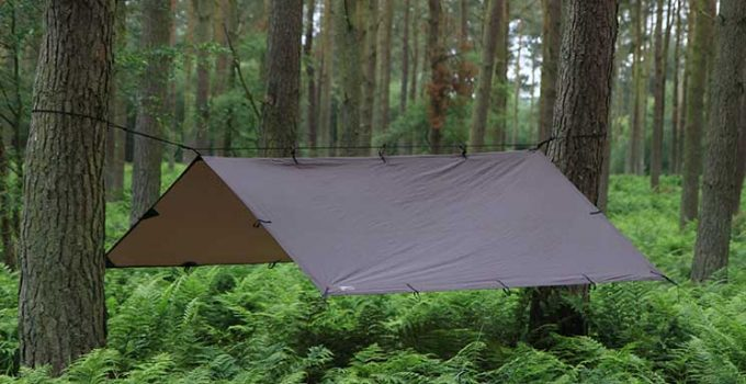 Best Tarp For Under Tent